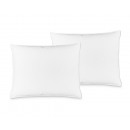 wholesale Cushions & Blankets: Duo Pack Down Pillow 60 x 70 White