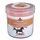 Großhandel Drogerie & Kosmetik: Pferdebalsam Chili Gel 250ml - Naturhof