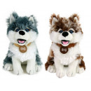 wholesale Dolls &Plush:Plush Husky - 20cm