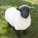 Großhandel Home & Living: Dekofigur - Schaf  groß - schwarzer Kopf - SP