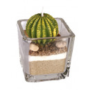 grossiste Bougies & bougeoirs: Bougie en verre - Cactus design