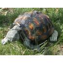 groothandel Figuren & beelden: Dekofigur - Turtle 30x34x46cm
