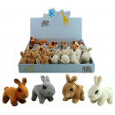 Plush bunny 4 assorted colors 14 cm