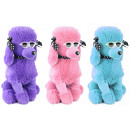 wholesale Sunglasses: Poodle with sunglasses sitting 3 colors assorted c