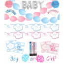 Baby Party Shower Gender Reveal Set 166 pieces