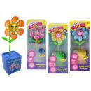 Großhandel Spielzeug: Magic Bloom interaktive Blume mehrfach sortiert -