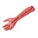 Arm chopped off arm in life size - about 47cm