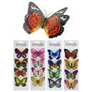 Dekosticker farfalla 4 pezzi sulla mappa - ca