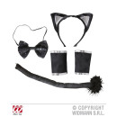 wholesale Toys: CATSET (ears, fly, tail, cuffs)
