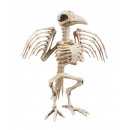 Scheletro di corvo della decorazione (32 cm)