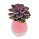 wholesale Plants & Pots: Rechargeable LED Flowerpot with Bluetooth Speaker