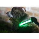 IA LED Light Up Pet Collar - Obroża dla psa - S /