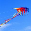 groothandel Handtassen: Prism Micron 5 Stack Package, Vlieger, Stuntvliege