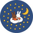 wholesale Garden playground equipment: Kreisy Nijntje Sleep, Play Mat Plush Night, Wasba