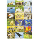 wholesale Gift Wrapping: paper puzzle 1animals, puzzle 12x9cm header 2cm
