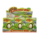 Großhandel Experimentieren & Forschen: Krokodil fossiles Ei, Fensterbox, 16x12x5cm