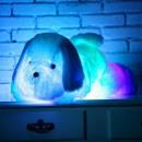 Spielzeugwelpenwelpen, mehrfarbige LED, Umgebungsl