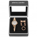 wholesale Jewelry & Watches: Pierre Cardin watch PCX6857L295K