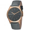 wholesale Brand Watches: Esprit watch ES1G034L0035
