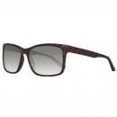 Großhandel Sonnenbrillen: Gant Sonnenbrille GA7033 52N 59