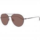 wholesale Sunglasses: Zegna Sunglasses EZ0033 08J 57
