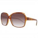 Converse Sunglasses The Entertainer Marrone / Ambr