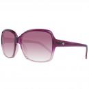 Converse sunglasses The Entertainer Purple Gradi
