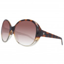 Converse Sunglasses With The Band Tortoise / Cryst