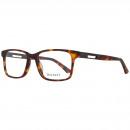 grossiste Lunettes: Hackett London lunettes HEK1161 53101