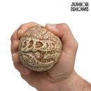 grossiste Fournitures de bureau equipement magasin:Junior Knows Fossil Ball