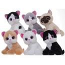 Großhandel Garten & Baumarkt: Glitter Eye Cats 6 sortierten 28cm