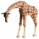 Großhandel Lizenzartikel:Bullyland Giraffe