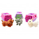 Animals traveling in three assorted basket