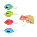 Pinch shell with pearl 4 assorted 24 pieces in dis