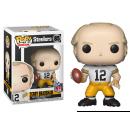 wholesale Toys: POP! NFL Steelers Terry Bradshaw