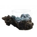 Schwemmholz mit Glasschale, Ø 18-20cm