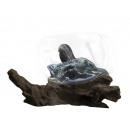 mayorista Casa y cocina: Madera flotante con cuenco de vidrio, Ø 23-25cm