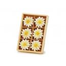 grossiste Cadeaux et papeterie: Aimant Edelweiss céramique, 5 cm