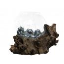 mayorista Casa y cocina: Madera de raíz natural con cuenco de vidrio, 25cm