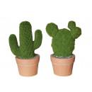 nagyker Ajándékok és papíráruk: Cactus kerámia moha Design, 32 cm