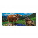 wholesale Bath & Towelling: towel Alpindesign 40 x 80 cm