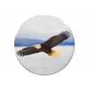 mayorista Regalos y papeleria: Foto imán águila, Ø 3,5cm