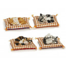 wholesale Home & Living: Decoration cat a. Pillows with artificial fur, 12
