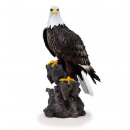 White head eagle from poly, 50 cm