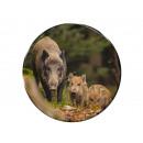 Photo magnet wild boar rot, Ø 3.5cm