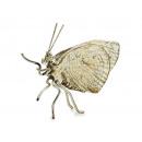 Großhandel Geschenkartikel & Papeterie: Schmetterling aus Metall, 8 cm
