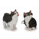 groothandel Home & Living: Grappige kat uit poly 10 cm