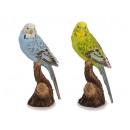 wholesale Home & Living: Budgerigar made of poly, 19 cm