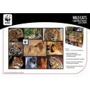 grossiste Puzzle:WWF 1000 Puzzle Wildcats