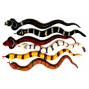 Rubber snakes 38 cm - in the Display